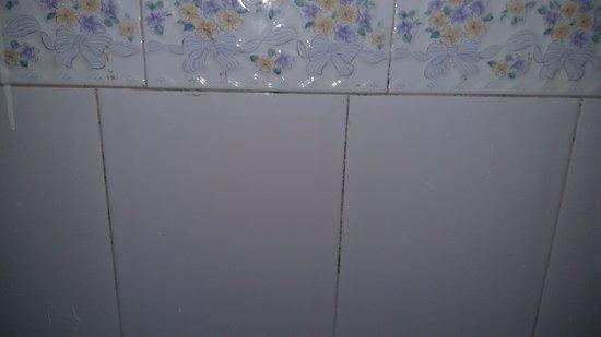 Apartahotel Las Americas: se puede ver lo que limpian