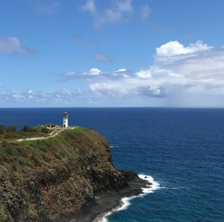 Birdwatching from Kilauea Point Nat Wildlife Refuge