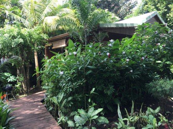 Photo de au jardin des colibris deshaies for Au jardin des colibris