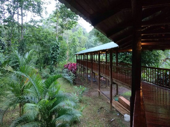 Selva Verde Lodge : photo0.jpg