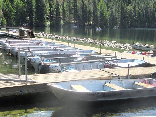 Gull Lake Marina, June Lake, CA