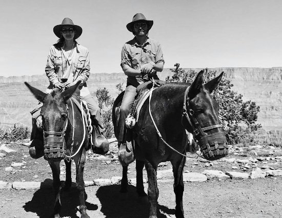 Grand Canyon Mule Tours by Xanterra: If you have a camera with you, your guide will take your photo