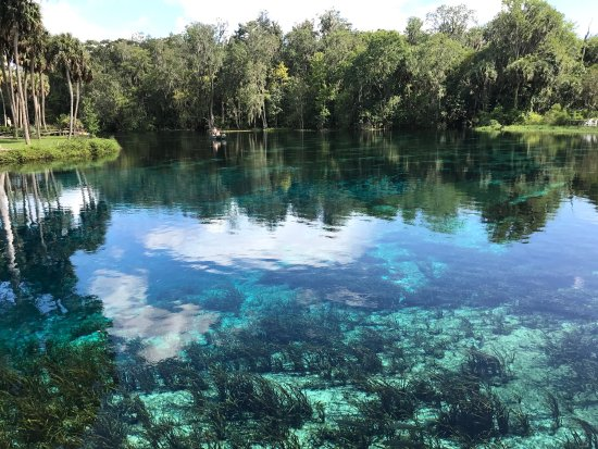Silver Springs State Park - シ...