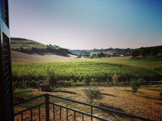 San Damiano d'Asti, Italia: FB_IMG_1502932506033_large.jpg