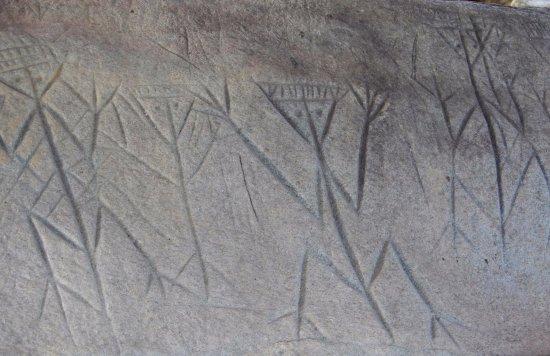 Centre d'Archéologie Amérindienne de Kourou: Etchings by an unknown pre-Colombian people. Experts split - either depicting war or fertility.