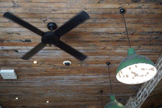 Maroubra, Australia: wooden ceiling