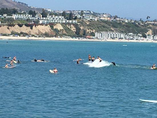 Dana Point, CA: A surfers beach!