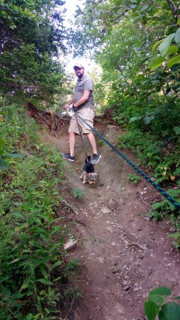 Owls Head, เมน: The steep path down to the rock beach