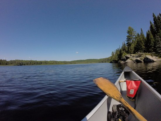 Algonquin Provincial Park, Kanada: sunny day in algonquin