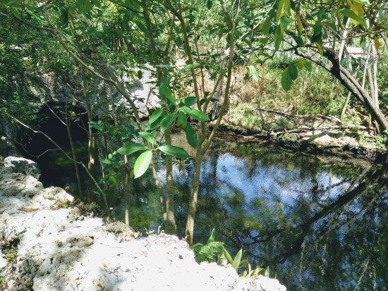 North Miami, Flórida: Small historic park