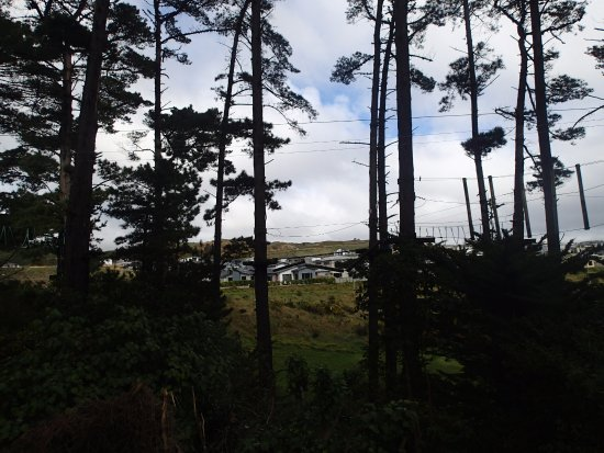 Porirua, Nova Zelândia: Overcast but still fun