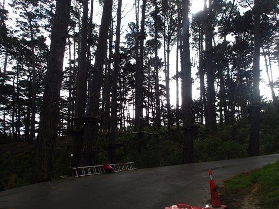 Porirua, Selandia Baru: Overcast but still fun