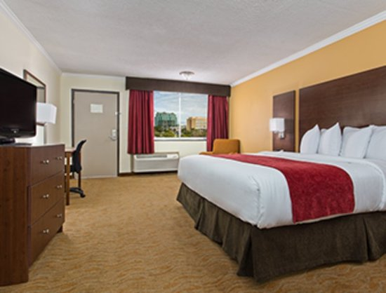 Ramada Westshore Tampa Airport: City View King