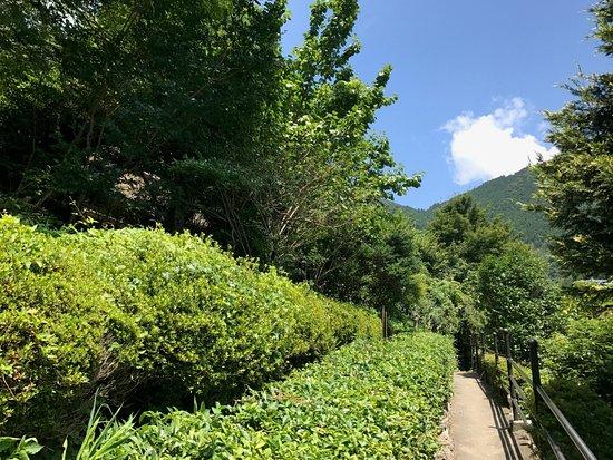 Heike Yashiki Museum of Folklore