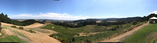 Youngberg Hill Vineyards & Inn: photo1.jpg