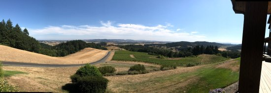 Youngberg Hill Vineyards & Inn Picture