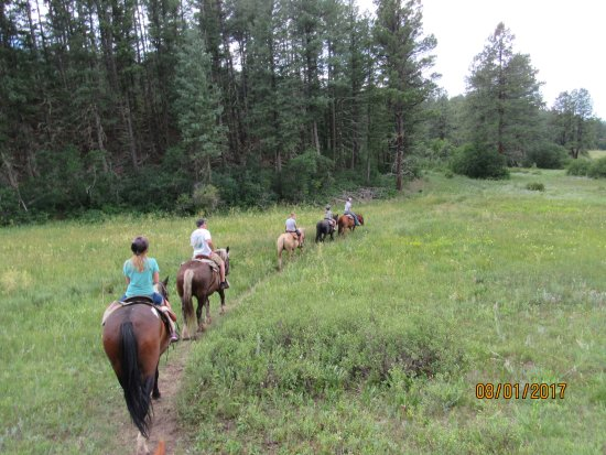 Rocky Mountain Wildlife Park: Riding