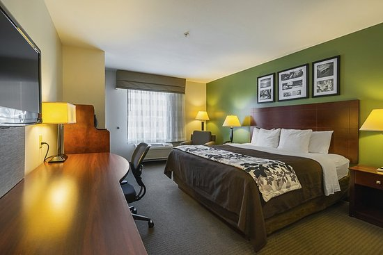 Manchester, TN: Guest room