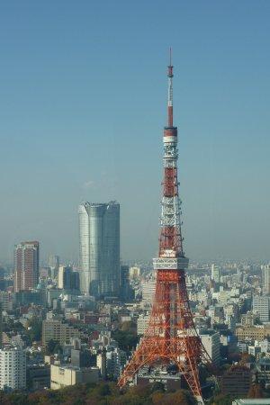 Observatory, Seaside Top : 世界貿易中心大廈眺望台(東京景色)