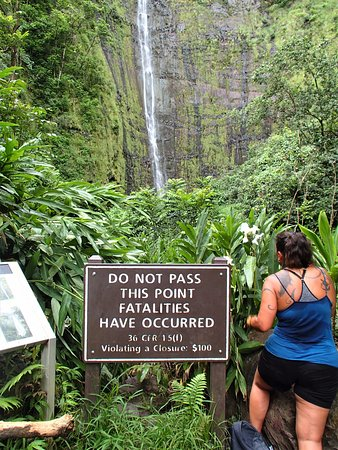 Hana Highway - Road to Hana: THE NANNY STATE RULES AT OHEO GULCH