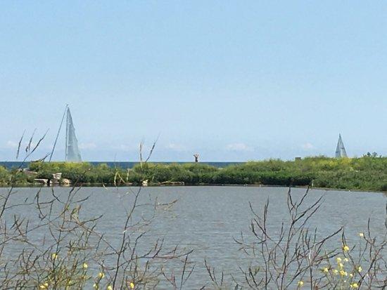 Manitowoc, WI: Sailboats leave the marina area