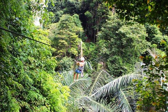 Thai'd Up Adventures