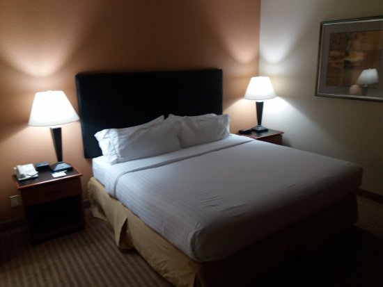 Foto de Holiday Inn Express Hotel & Suites-DFW North