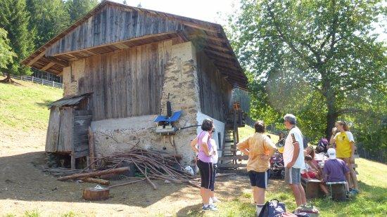 Azienda Agricola La Capra Felice