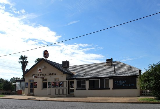 Wagga Wagga, Australia: Known locally as the Muddy Duck