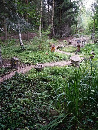 Ashby de la Zouch, UK: Woodland walk at Conkers