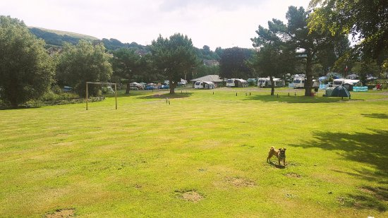 Wroxall, UK: Dog walking field and play area for children