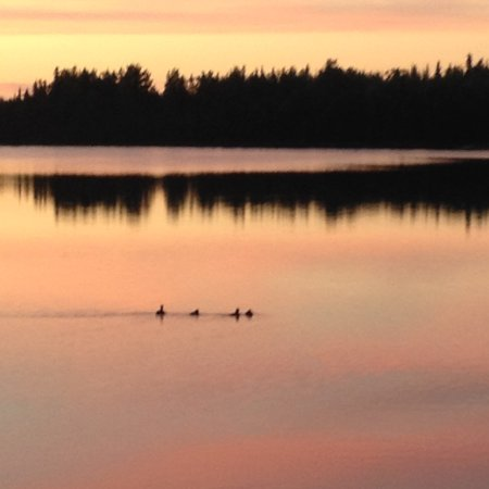 Soldotna, AK: Denise Lake Sunset