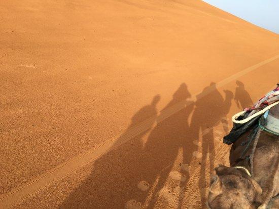 Authentic Travel Maroc - Private Day Tours : dune e dromedari