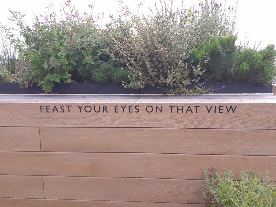 john lewis roof garden - Garden Sheds John Lewis