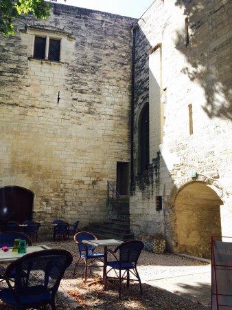 salon de thé musée du petit palais - photo de musée du petit palais