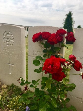 Pozieres, France: Flowers