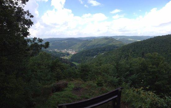 Waldbreitbach, Alemania: Uitzicht vanaf de Bärekopp (vrij vertaald : kale bergtop)