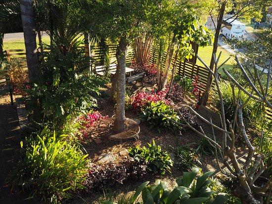 Nimbin, أستراليا: Grey Gum Lodge's garden
