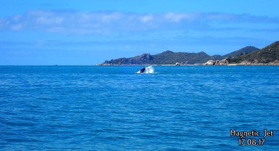 Magnetic Island, Australië: photo2.jpg