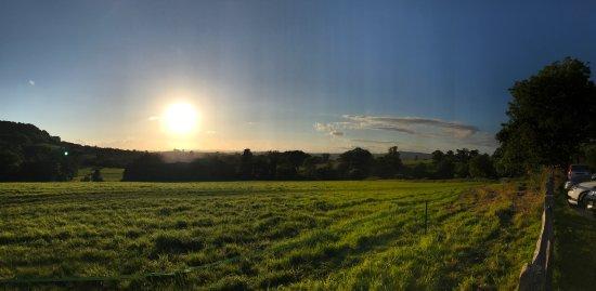 Honiton, UK: photo2.jpg