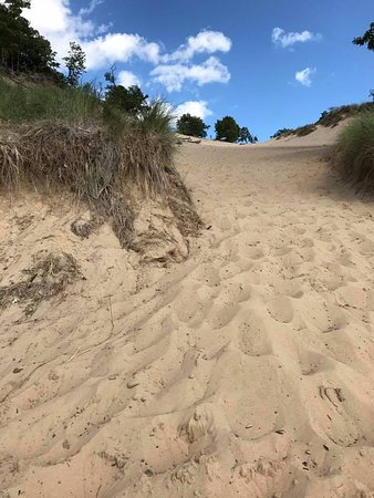 Van Buren State Park: The main dune from the bottom, looking up.