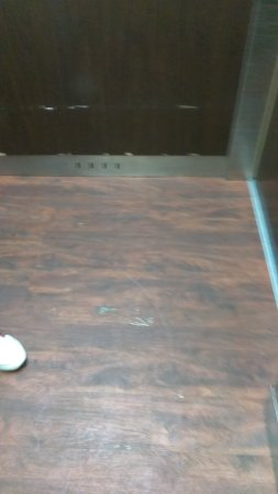 Miami Springs, FL: AC condition. Restroom wall and elevator