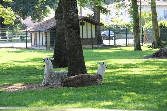 Parc Animalier de Nahuques