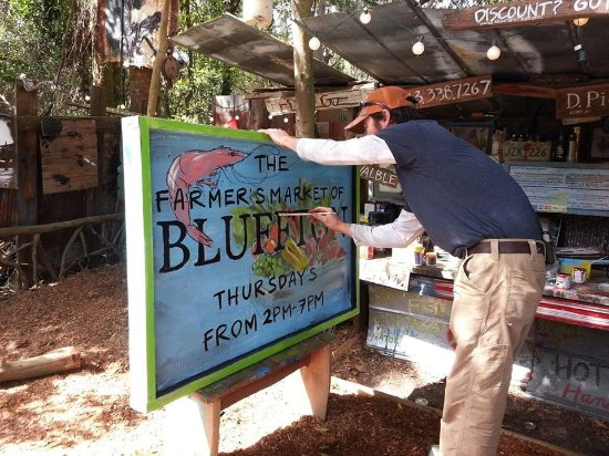 Bluffton, SC: Artist in action