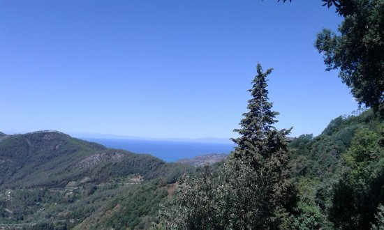 Santuario Nostra Signora di Soviore: Panorama
