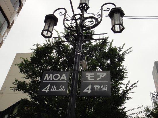 Moa 4