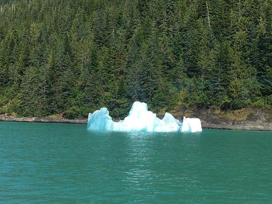 Tracy Arm Fjord: Iceberg