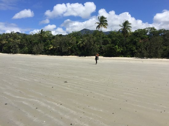 Cape Tribulation, Australië: photo2.jpg
