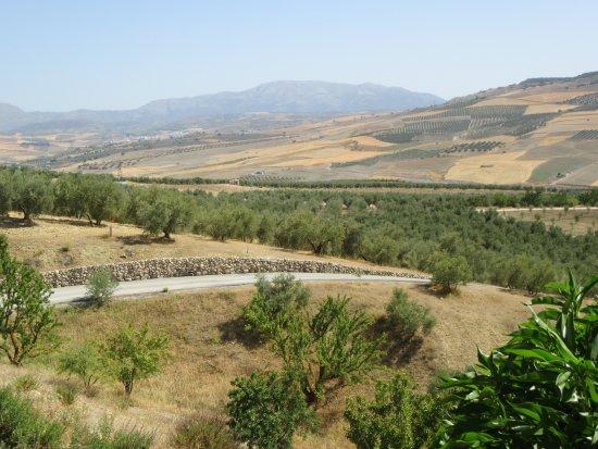 Province of Granada Picture