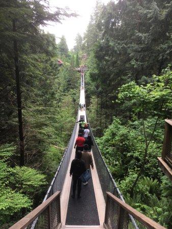 North Vancouver, Canada: Capilano hangbrug